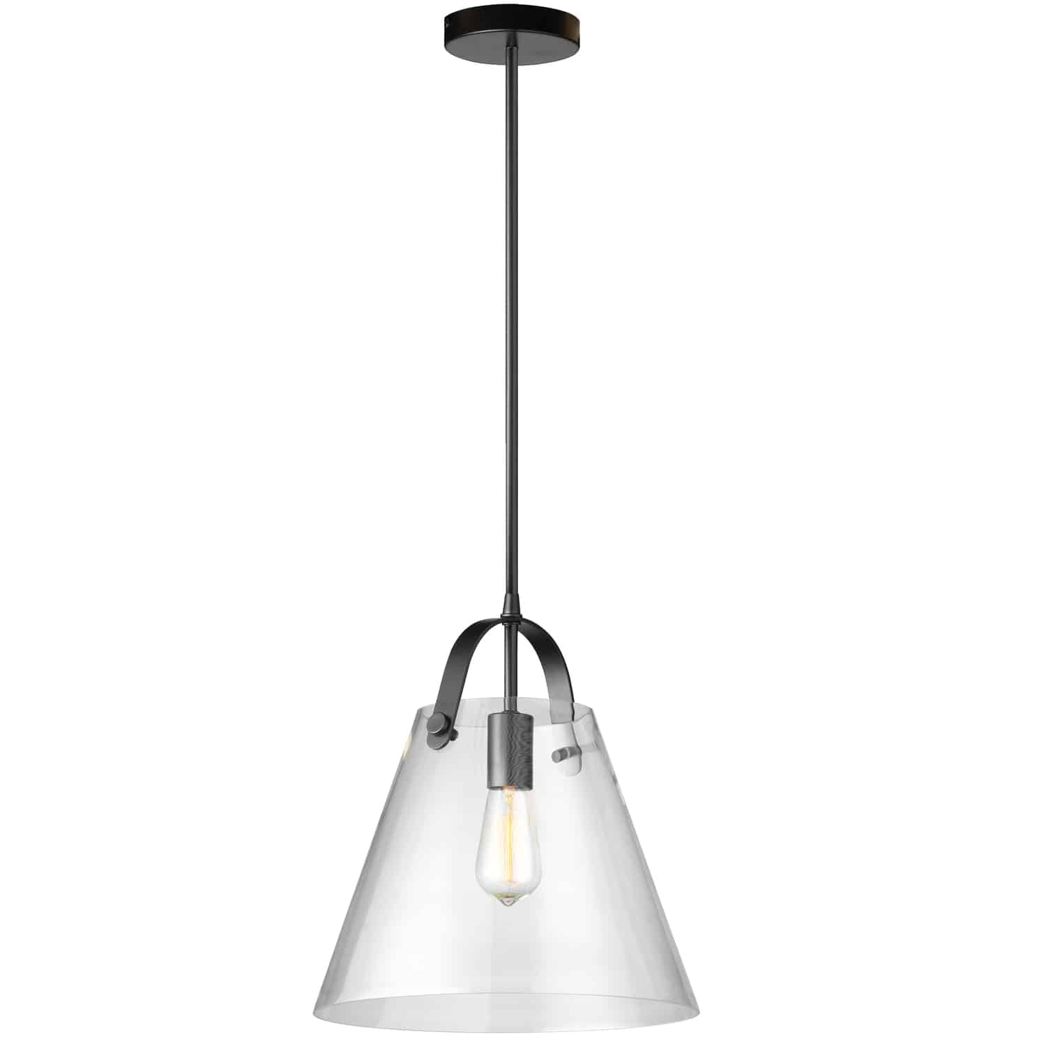 1 Light Incandescent Pendant Matte Black Finish with Clear Glass